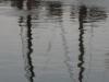 27-04-2011-afsluiting-klodderen-15